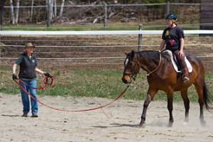 Riding Lessons at Back of Beyond