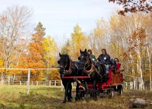 Family Wagon Ride