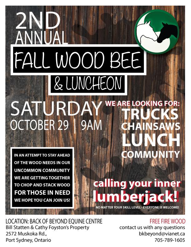 fall-wood-bee-flyer